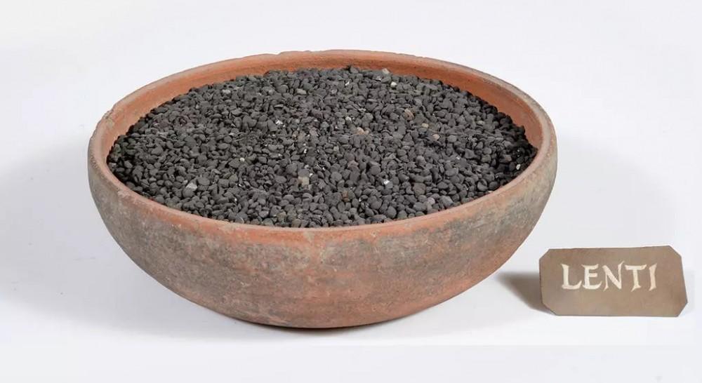 Чечевица, найденная при раскопках в Помпеях. © Musée archéologique national de Naples