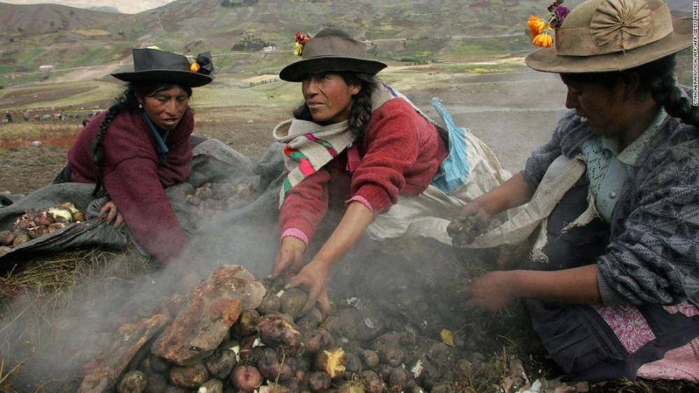 Чили и Перу приписывают себе происхождение картофеля