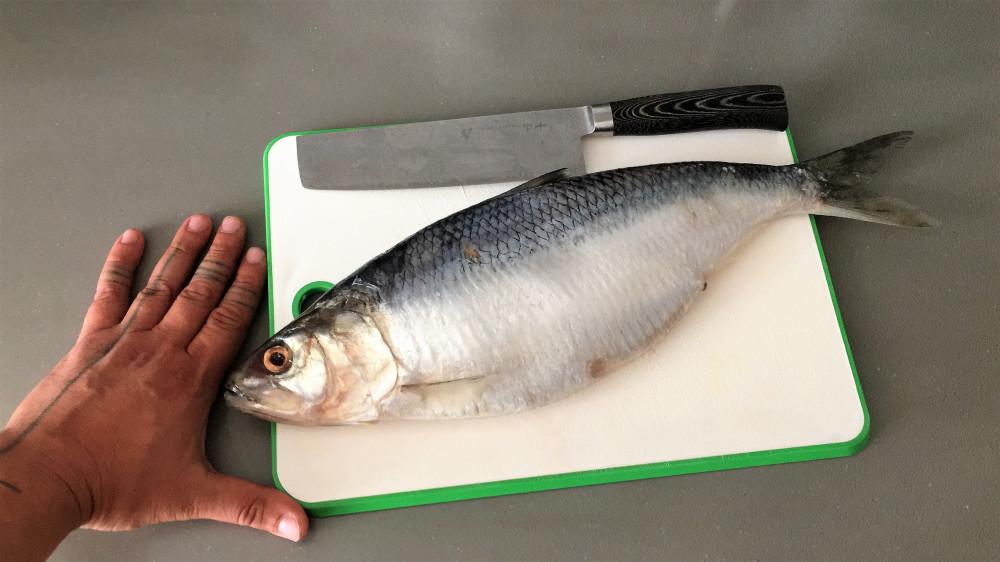Вы рыбов продаете? — Нет рассказываю Рыба