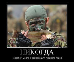 184977_nikogda_demotivators_ru