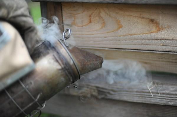 smoker_1