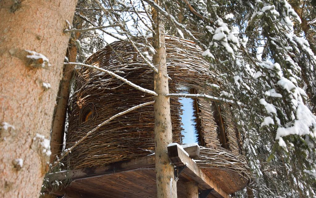 Назад на деревья или где поставить мангал с видом на Монблан