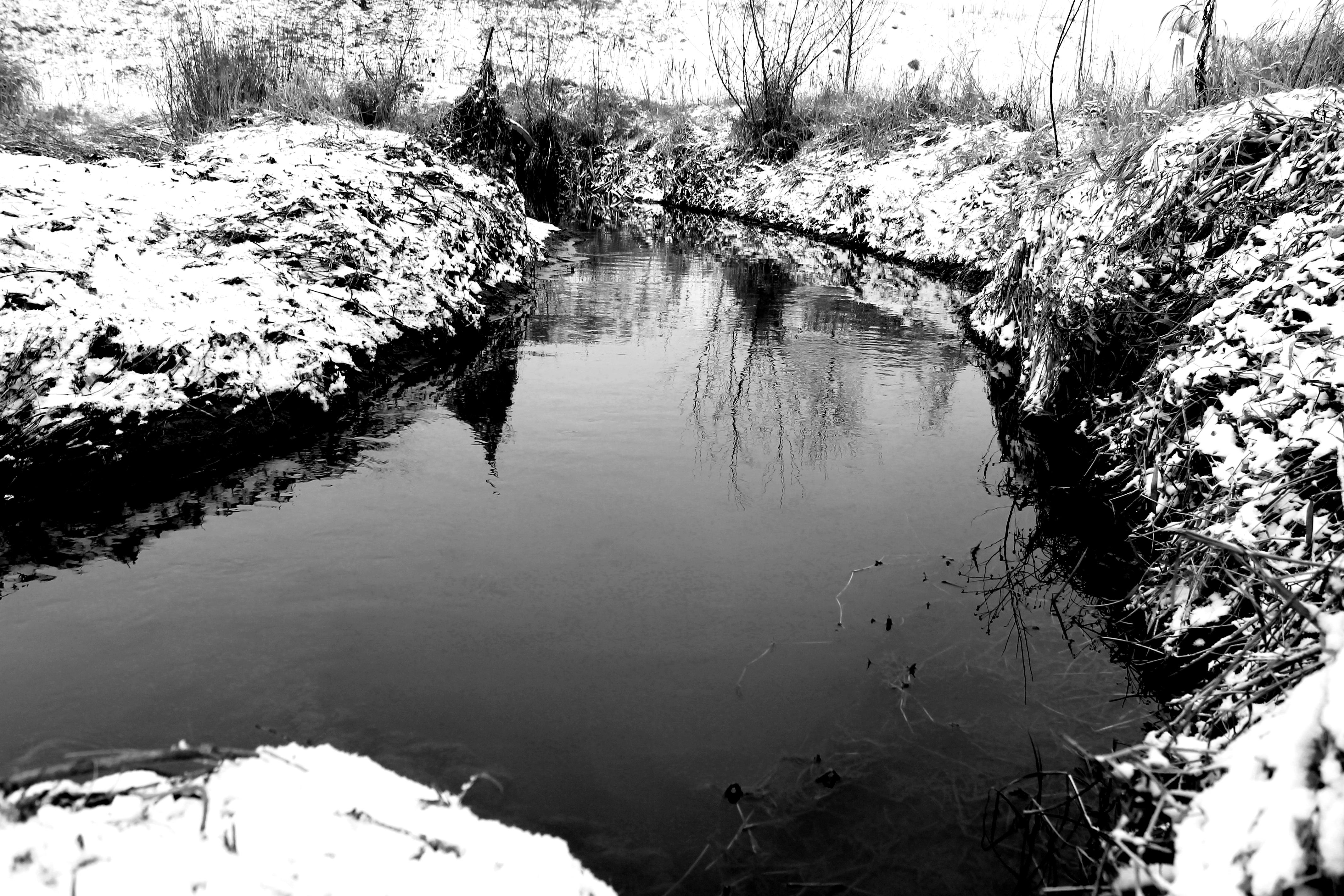 Река лета