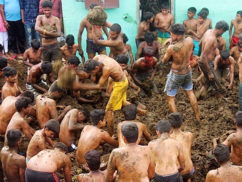 Индия отговаривает граждан от использования коровьих фекалий для защиты от
