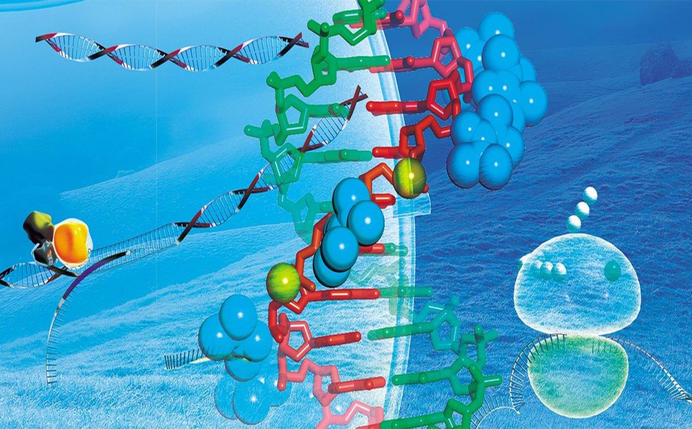 РНК-технологии
