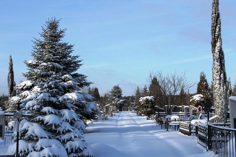 По ходу дел и тел: благодарная родня, КПЗ, зона  и Рандовское кладбище города Гомеля зимой (фото)...