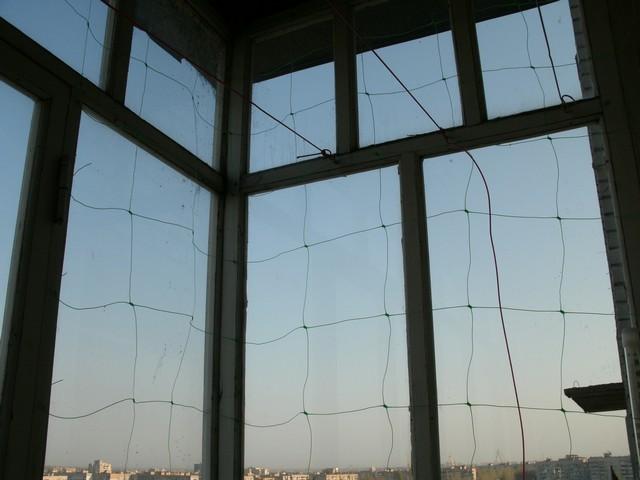 Грядка на балконе