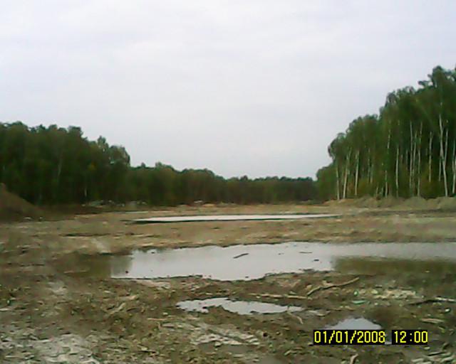 Прогулки в химкинском лесу где находится