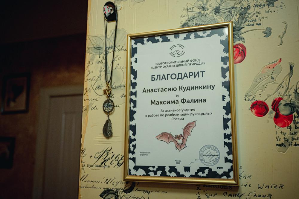 (с) фото Александра Миронова