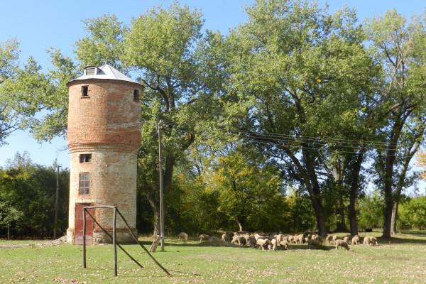 12-Башня