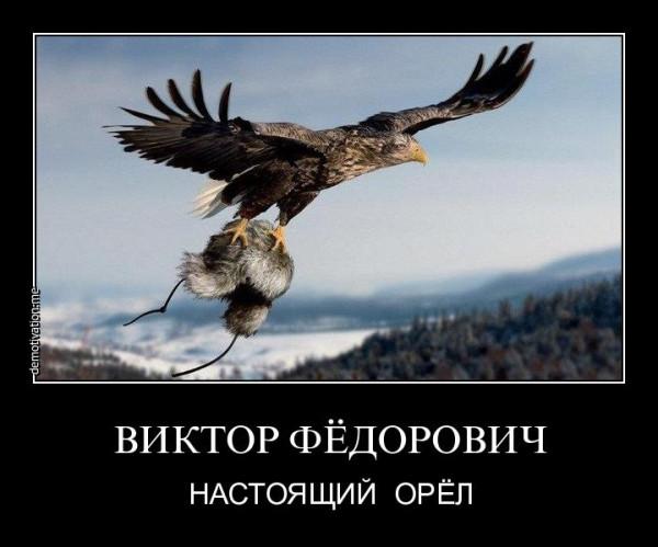 Орёл-дем
