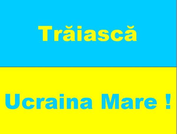 Marcisor