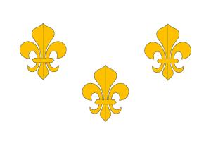 Flag_of_France.svg.png