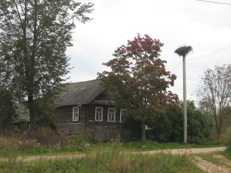 Стихи о селе.  Разрешите пройтись по России