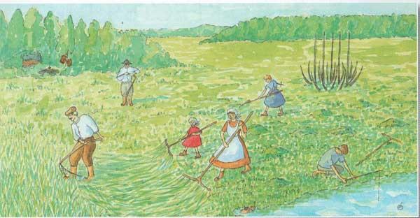 Стихи о селе. Сено мокнет на лугах
