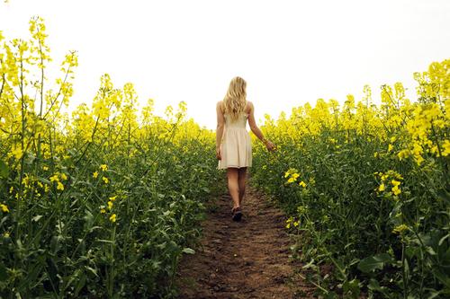 Стихи о селе. Часть души моей в каждой травинке