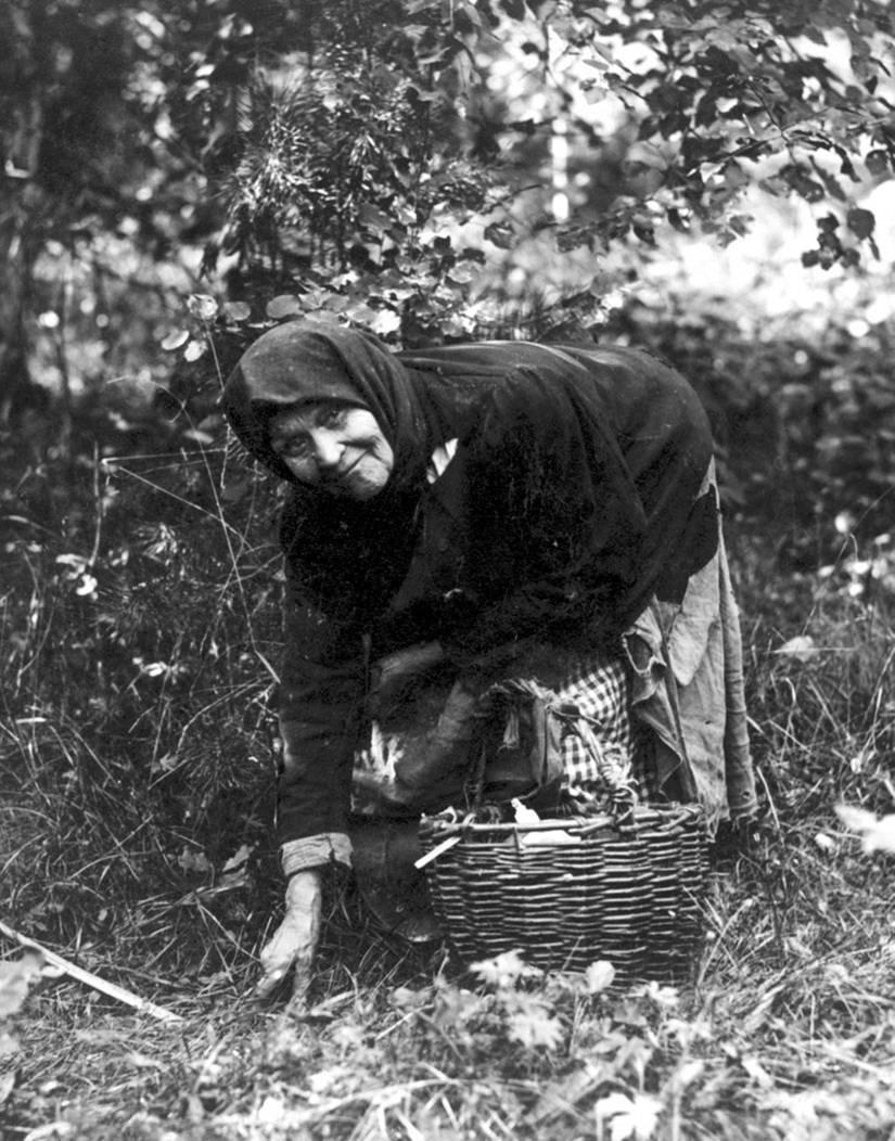 Мудрость крестьянская в Вятском крае
