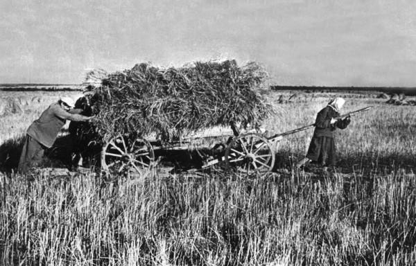Заготовка сена. 1944 г.