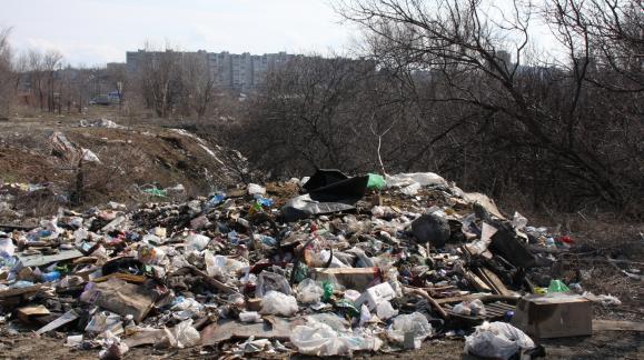 Волгоград снова признан самым замусоренным городом региона