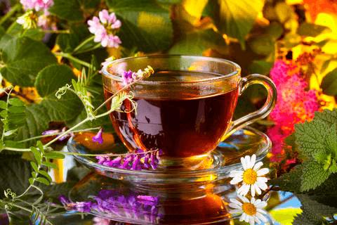 Чудесный сбор от гипертонии - монастырский чай