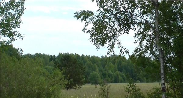 Деревенские будни в Шабалинском районе