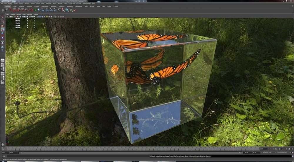 Monarch_Butterfly_in_Glass