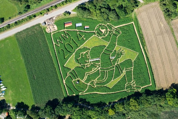 labyrinth carved in the field