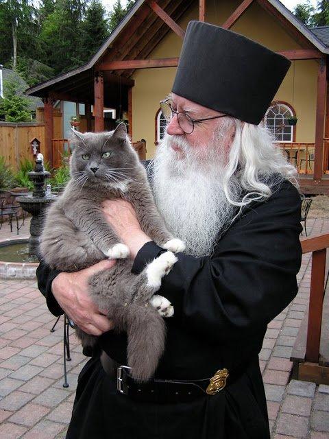 Cat Orthodoxal