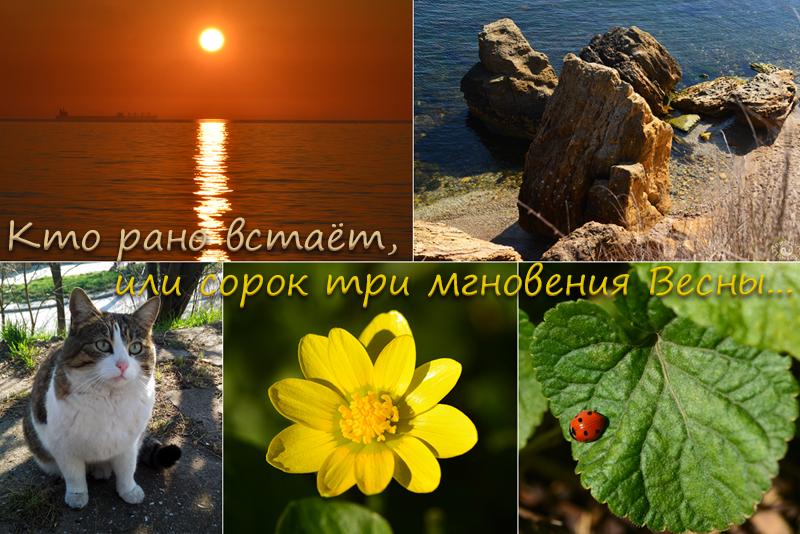 ranok_oblojka.jpg