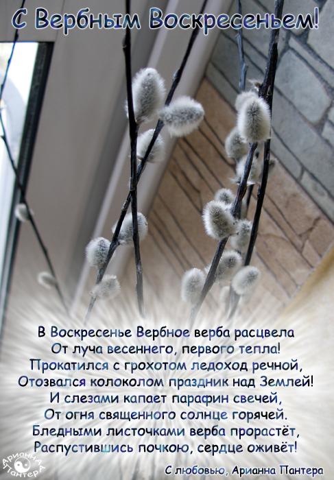 verbnoevs2.jpg
