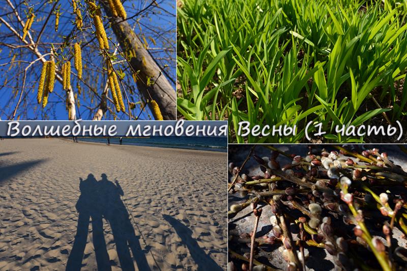 10prodoljenie_oblojka.jpg