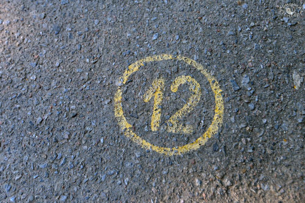 number17.jpg