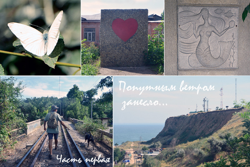 mis_oblojka2.jpg