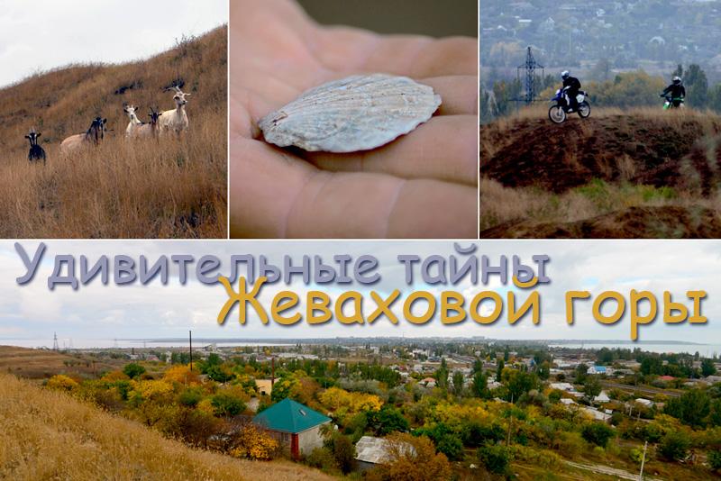 sanator_oblojka1.jpg