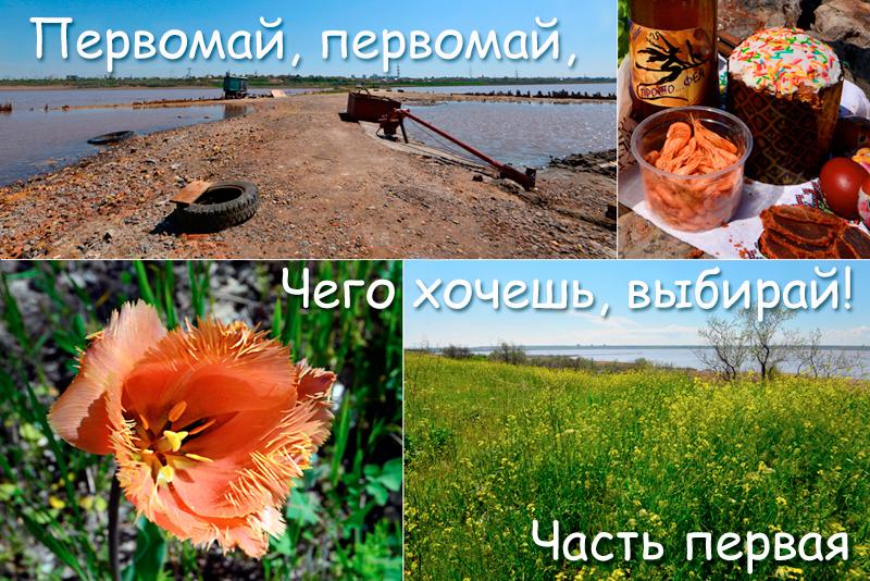 pervomay_oblojka1.jpg
