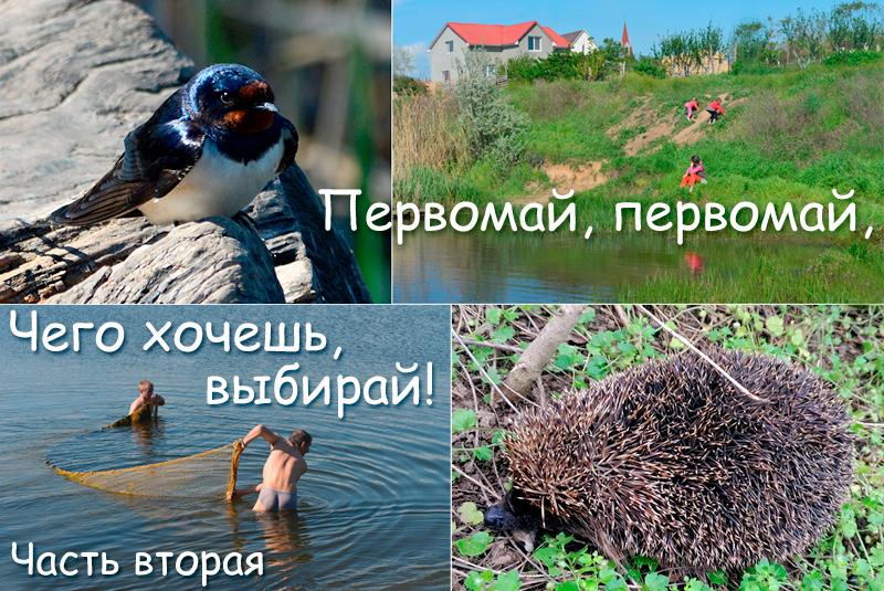 pervomay_oblojka2.jpg