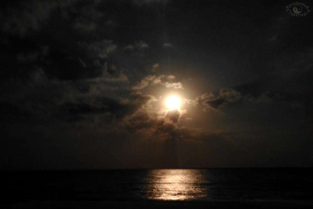 moon8.jpg