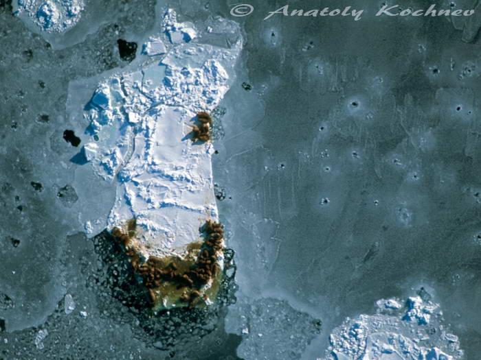 Bering Sea bird's-eye view