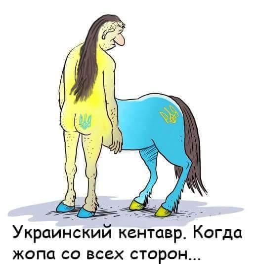 Открытке, фото картинки приколы украинский кентавр