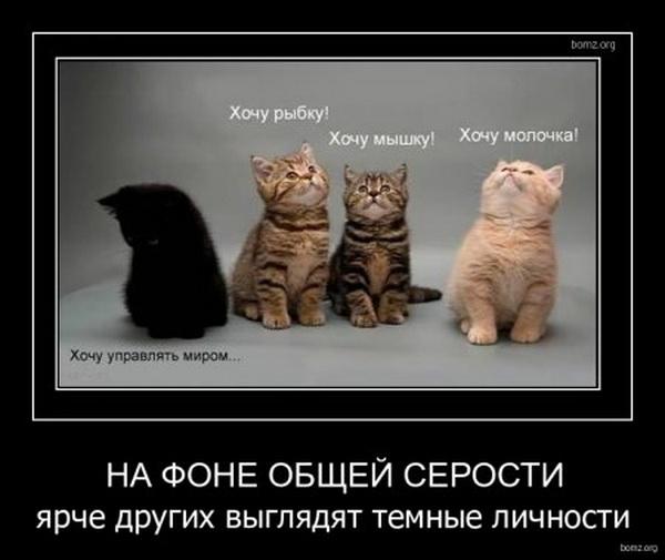 1311052105_654528-2011_07_18-02_09_50-bomz_org-demotivator_na_fone_obsheyi_serosti_yarche_drugih_viyglyadyat_temniye_lichnosti