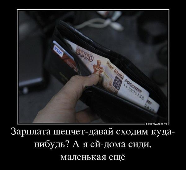 1444282781_demki