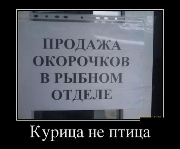 1419577606_dmtv-14