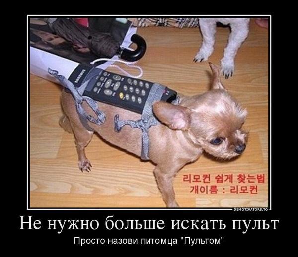 0_90eb5_656414ec_orig