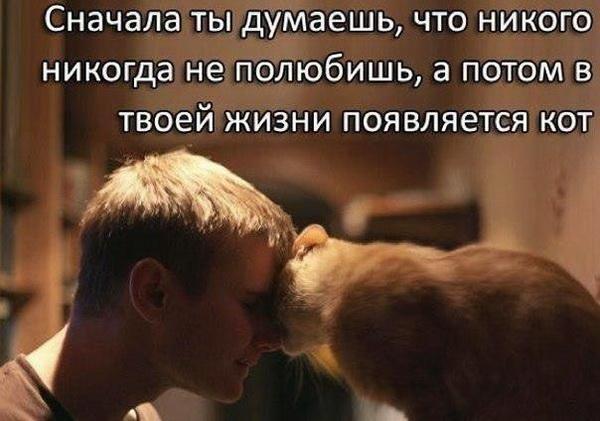 0_951ef_dcd70d60_orig