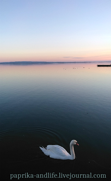 Однажды 25 декабря на озере Балатон