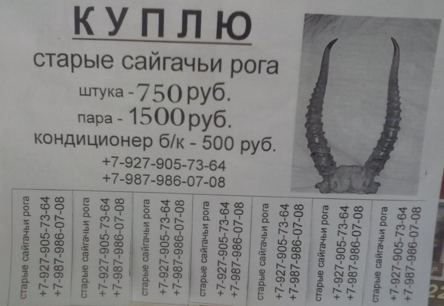 CAM00034
