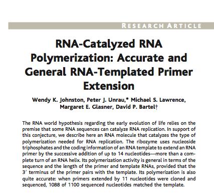 Write my the rna world hypothesis