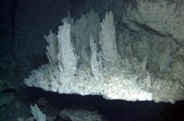 Lost_City_(hydrothermal_field)02.jpg
