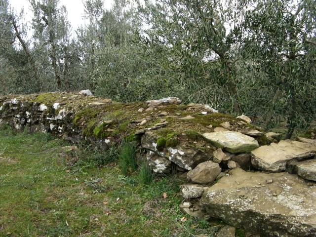 Ареццо-окрестности