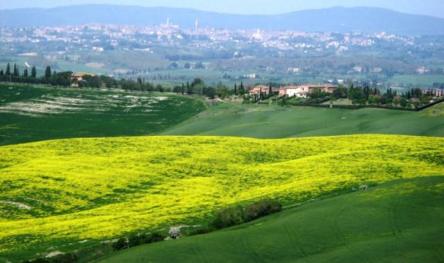 italia-v-mae